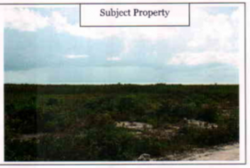 Properties For In The Bahamas