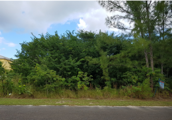 Vacant Lot - Single-family residential